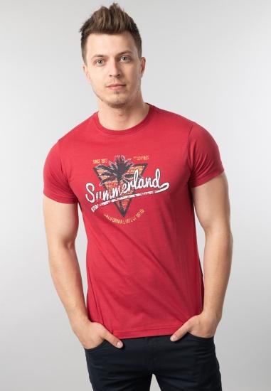 T-shirt męski z nadrukiem...